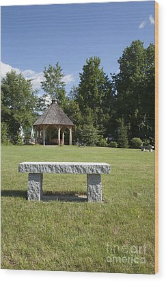 Town Park In Bartlett New Hampshire Usa Wood Print by Erin Paul Donovan