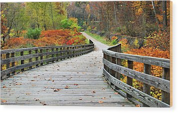 Towpath In Summit County Ohio Wood Print by Kristin Elmquist