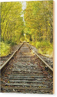Track To Nowhere Wood Print by Greg Fortier