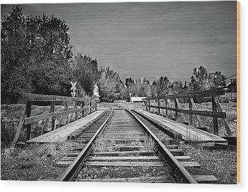 Tracks 2 Wood Print by Matthew Angelo