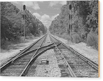 Wood Print featuring the photograph Tracks 2 by Mike McGlothlen
