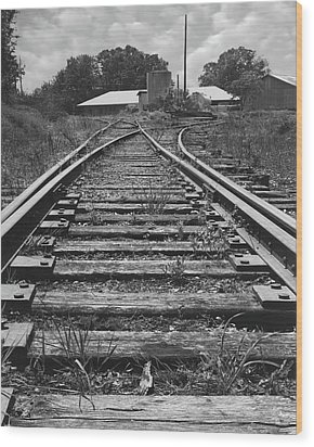 Wood Print featuring the photograph Tracks by Mike McGlothlen