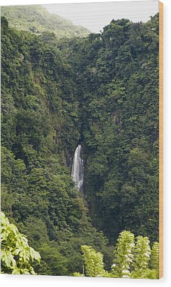 Trafalgar Falls From A Distance Wood Print by Todd Gipstein
