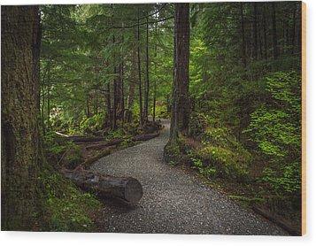 Trail Around Ward Lake Ketchikan Alaska Wood Print by Michael J Bauer