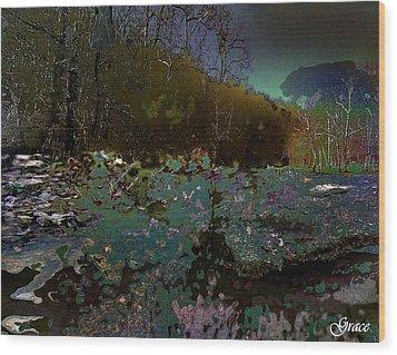 Trailing Along Wood Print by Julie Grace