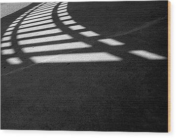 Light Rail 1 Of 1 Wood Print