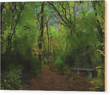 Trailside Bench Wood Print by Cedric Hampton