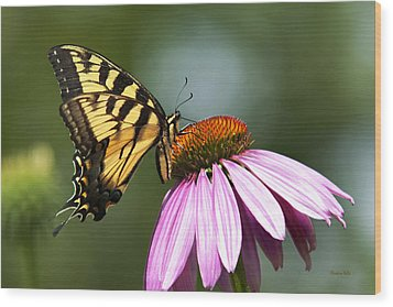Tranquil Butterfly Wood Print by Christina Rollo