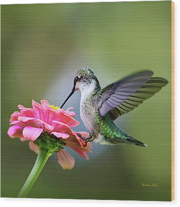 Tranquil Joy Hummingbird Square Wood Print
