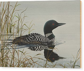 Tranquil Stillness Of Nature Wood Print by James Williamson