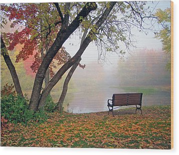 Tranquil View Wood Print