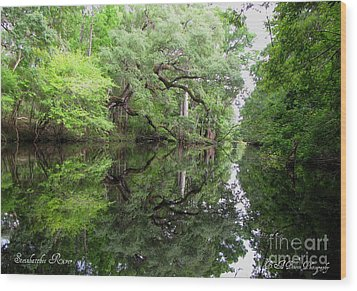 Wood Print featuring the photograph Tranquility by Barbara Bowen