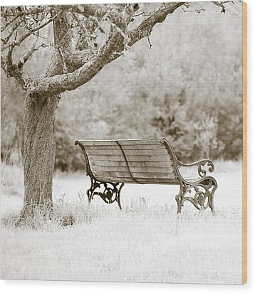 Tranquility Wood Print by Frank Tschakert
