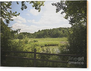 Tranquility Wood Print by Jeannie Burleson