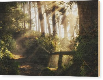 Tranquility Wood Print by Peter Acs