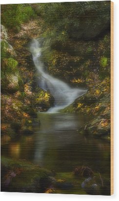 Wood Print featuring the photograph Tranquility by Ellen Heaverlo