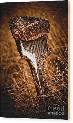 Transformation Wood Print by Venetta Archer