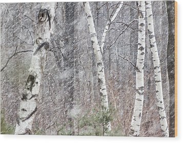 Transition, Spring Squall 3 - Wood Print