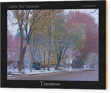 Transitions Autumn To Winter Snow Poster Wood Print by James BO  Insogna