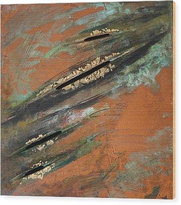 Transitory Marks Iv Wood Print by Dodd Holsapple