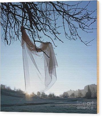 Transparent Fabric Wood Print by Bernard Jaubert