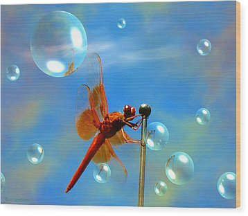 Transparent Red Dragonfly Wood Print by Joyce Dickens