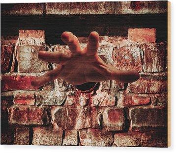 Trapped Wood Print by Wim Lanclus