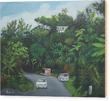 Traveling In Adjuntas Mountains Wood Print