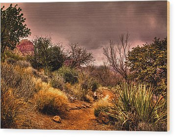Traveling The Trail At Red Rocks Canyon Wood Print by David Patterson