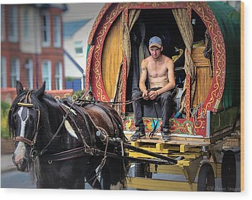 Traveller 1 Wood Print by Wallaroo Images