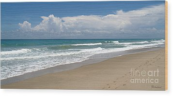 Treasure Coast Beach Florida Seascape C4 Wood Print by Ricardos Creations