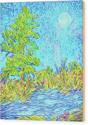 Wood Print featuring the digital art Tree Aglow In Moonlight - Mountain Scene In Boulder County Colorado by Joel Bruce Wallach