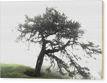 Wood Print featuring the photograph Tree by Alex Grichenko