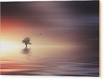 Tree And Birds On Lake Sunset Wood Print