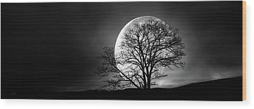 Wood Print featuring the photograph Tree And Moon by Bob Orsillo