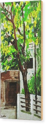 Tree And Shade Wood Print by Usha Shantharam