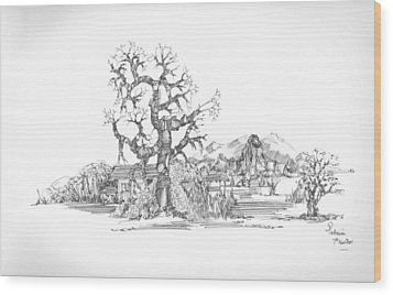 Wood Print featuring the drawing Tree And Some Rocks by Padamvir Singh