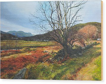 Tree At Aberglaslyn Wood Print by Harry Robertson