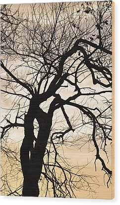 Tree At Sunrise Wood Print by Rose  Hill