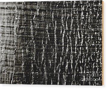 Tree Bark Wood Print by Charmian Vistaunet