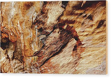 Tree Bark Series  - Patterns #2 Wood Print by Lexa Harpell