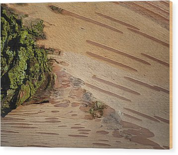 Tree Bark With Lichen Wood Print by Margaret Brooks