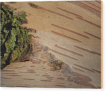Tree Bark With Lichen Wood Print