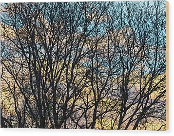 Wood Print featuring the photograph Tree Branches And Colorful Clouds by James BO Insogna