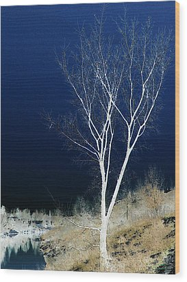 Wood Print featuring the photograph Tree By Stream by Stuart Turnbull