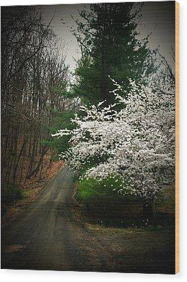 Tree By The Road Wood Print by Joyce Kimble Smith