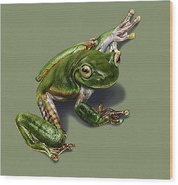 Tree Frog  Wood Print by Owen Bell