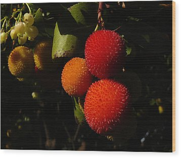 Tree Fruit Wood Print by Terry Perham