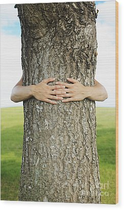 Tree Hugger 1 Wood Print by Brandon Tabiolo - Printscapes