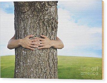 Tree Hugger 2 Wood Print by Brandon Tabiolo - Printscapes